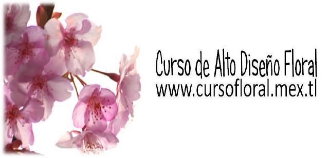 Curso de Arte Diseño Floral Monterrey / Curso de Flores en