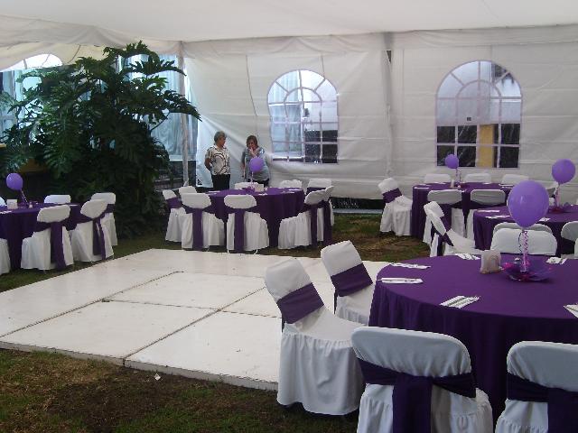Renta de jardin para eventos con alberca en coyoacan en for Renta de albercas portatiles para fiestas df