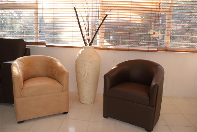 Sillones individuales 980 en gustavo a madero for Sillones individuales