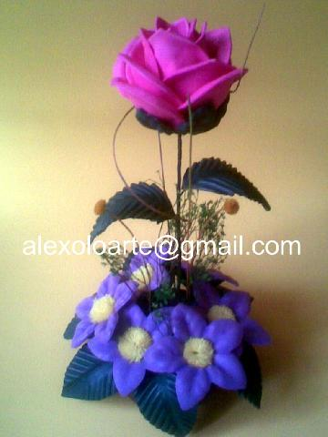 Imágenes De Flores De Fomi En Iztapalapa