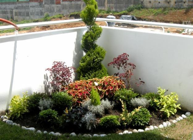Im genes de jardineria en xochimilco for Jardineria xochimilco