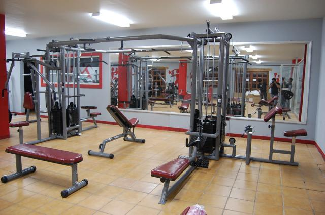 Fabrica de aparatos para gimnasio profesionales en morelia for Aparatos gimnasio