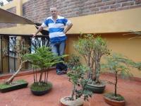 Servicios en merida for Jardines zen valladolid