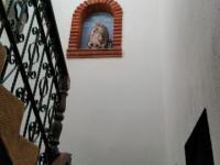 imagen-9