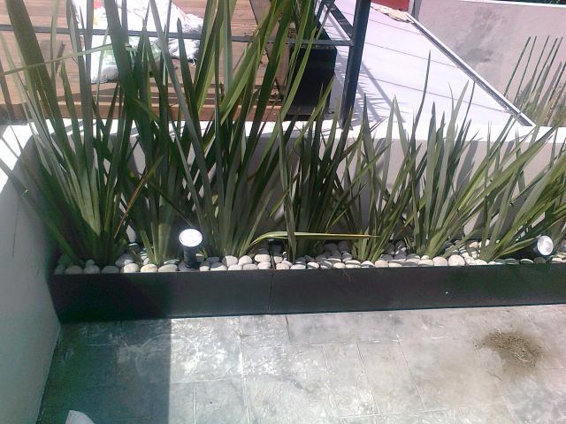 Im genes de jardineria y asociados xochimilco en xochimilco for Jardineria xochimilco