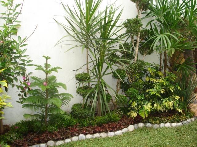Jardineria mexicana en xochimilco Jardineria xochimilco