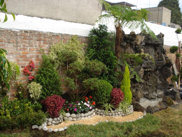 Im genes de asociaci n de jardineros de xochimilco en - Madreselva en maceta ...