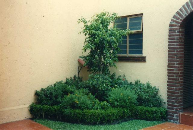 Im genes de jardines orientales y modernos en mexico for Jardines orientales fotos