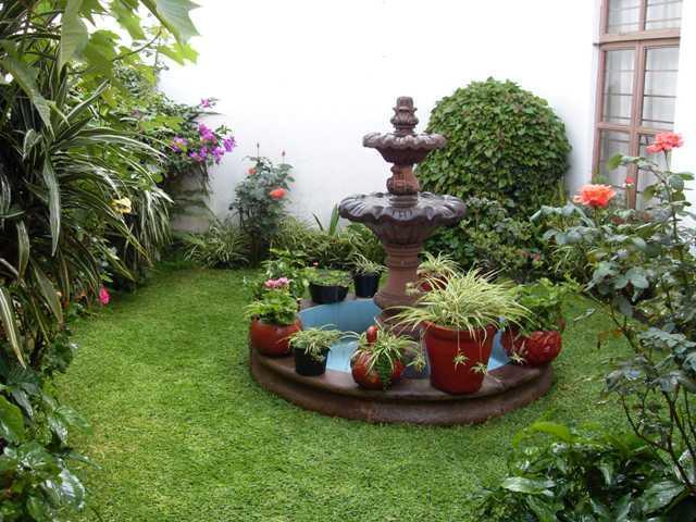 instalación de todo tipo de planta (Tropical, acuática, desértica