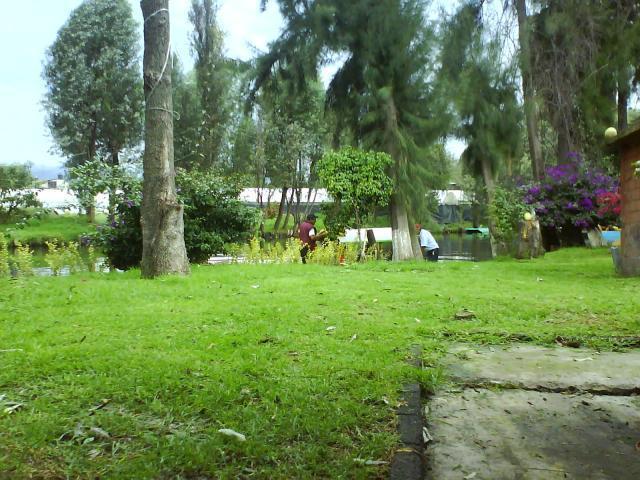 Im genes de renta de jardin turistico trajinera en for Jardin xochimilco