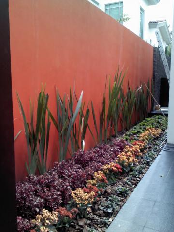 Im genes de dise o de jardines en guadalajara - Diseno de jardines interiores ...