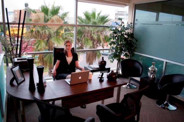 Modelo de oficinas ejecutivas imagui for Modelos de oficinas