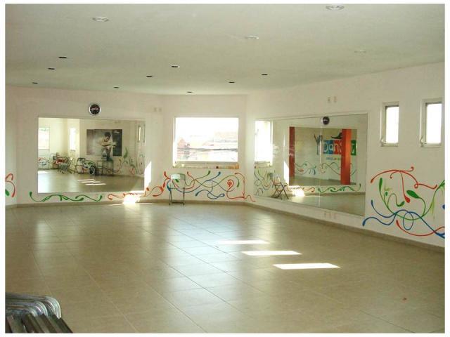 Espejos para gimnasio o academia de baile en leon - Espejos para gimnasios ...